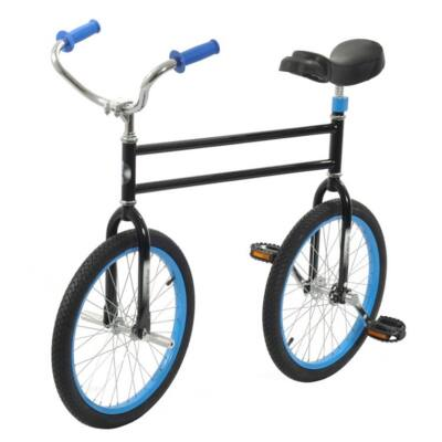 Bicicleta Circ Hoppley