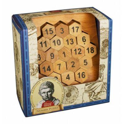 Aristotle's Number Puzzle