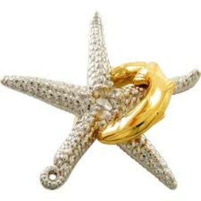 Hanayama Cast Puzzle - Starfish